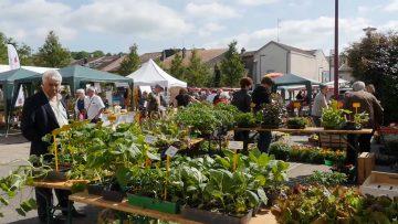 2015 – La main verte : Marché aux fleurs et de l'artisanat