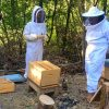 2020 – Julien explique les ruches et nous parle de l'association Bzzz Abeille